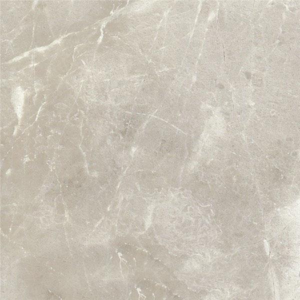 Premium Gray Marble