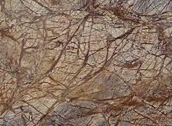Rainforest Brown Marble Colors