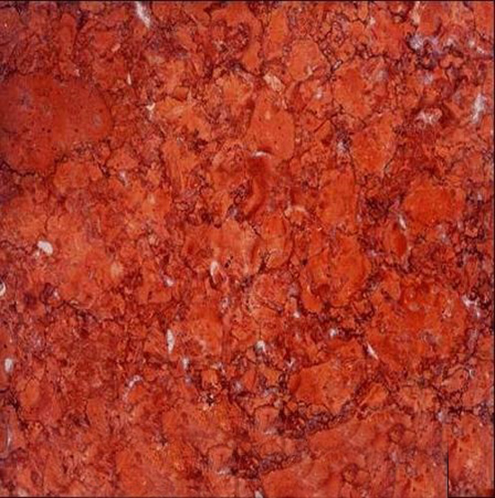 Red Fossil Marble