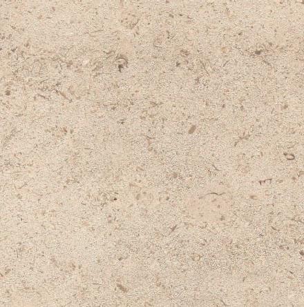 Roche Saint Nicolas Limestone