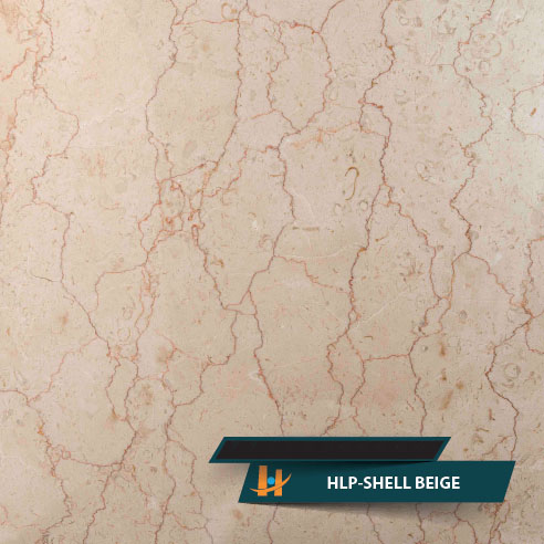 SHELL BEIGE Marble Color