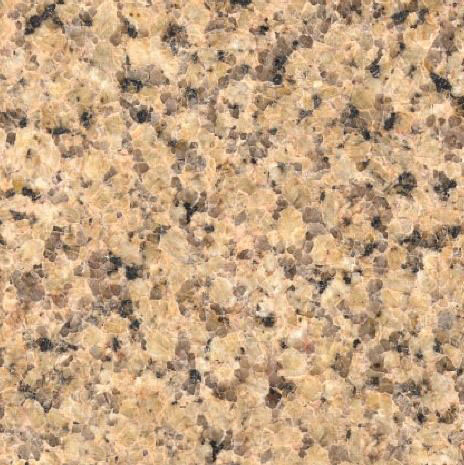 Salvaleon Granite