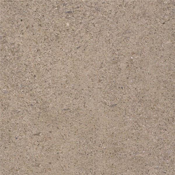 Sandy P Limestone