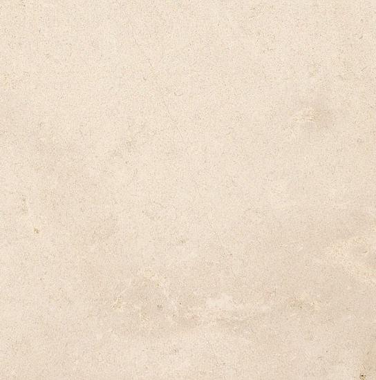 Savigny Limestone