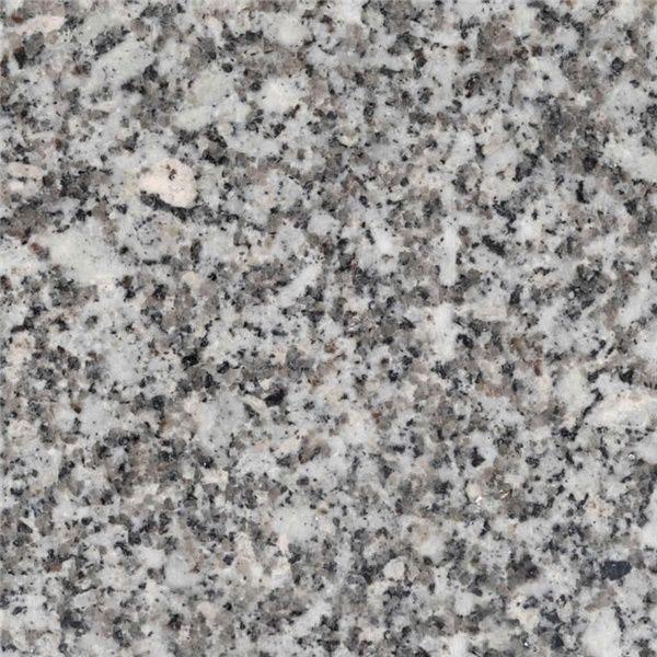 Silver Fish Granite