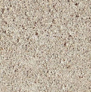 Sireuil Limestone