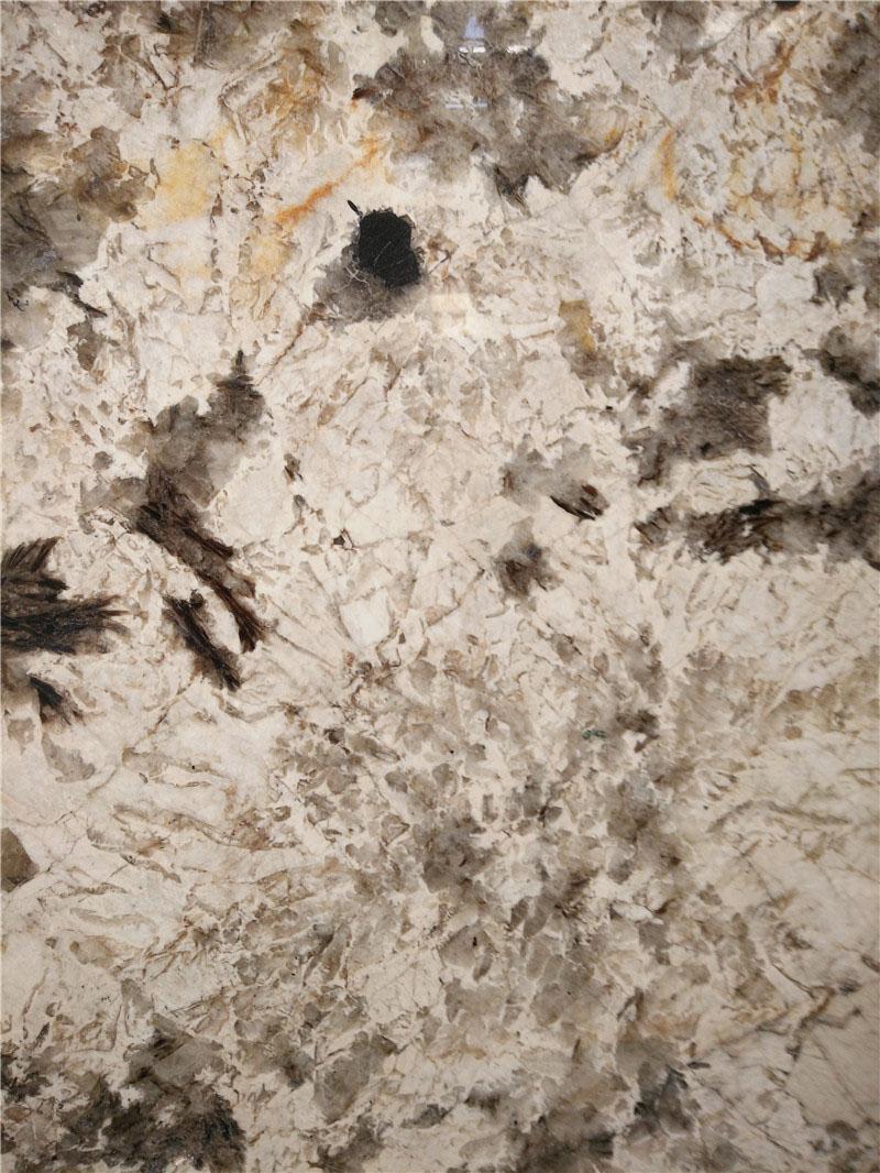Snow Mountain Fox Granite Color