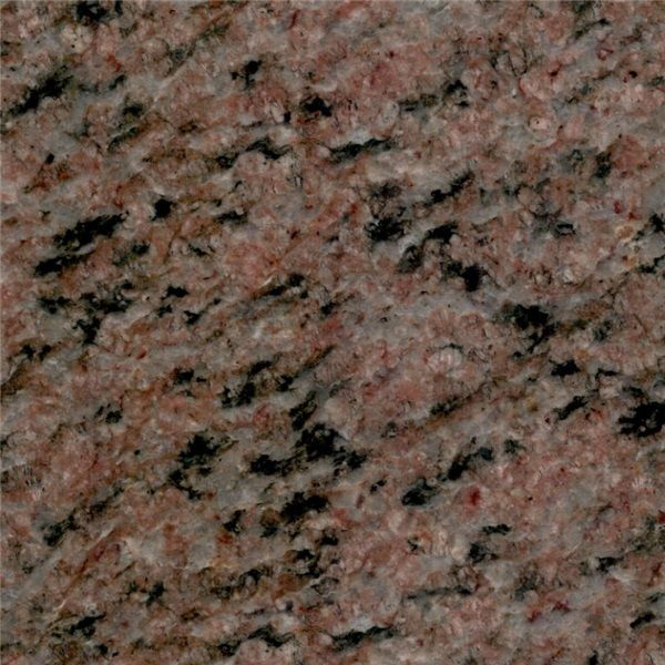 Special Brown Granite