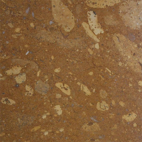 Star Gold Marble Color