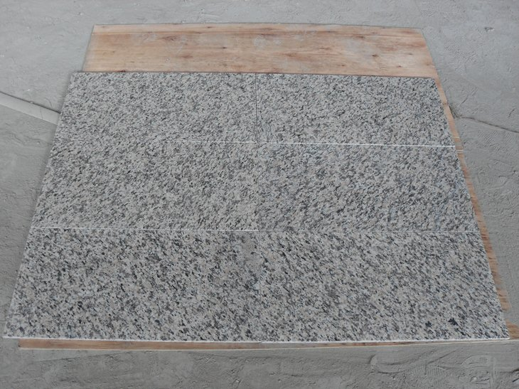Tiger Skin White Granite Tiles for Flooring