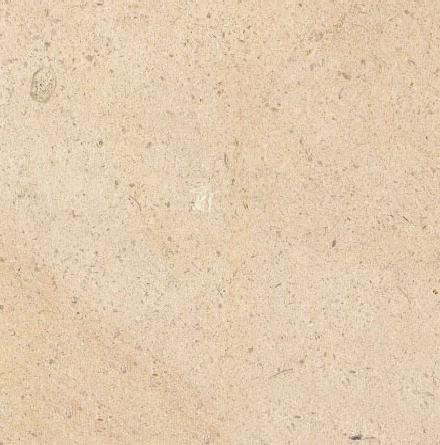Valdenod Limestone