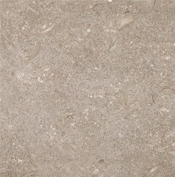 Verde Caceres Limestone