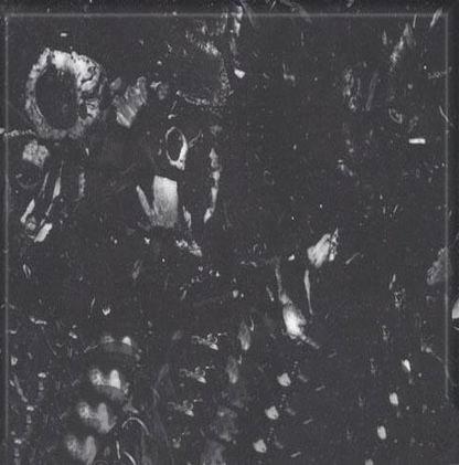 Vytina Black Marble