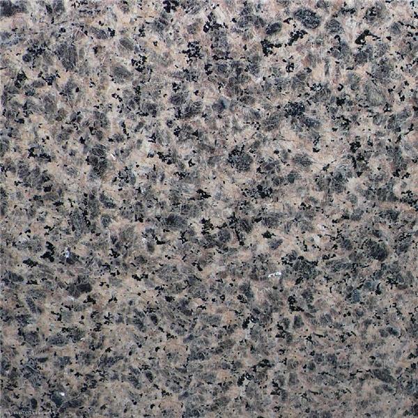 Zhangpu Leopard Skin Granite