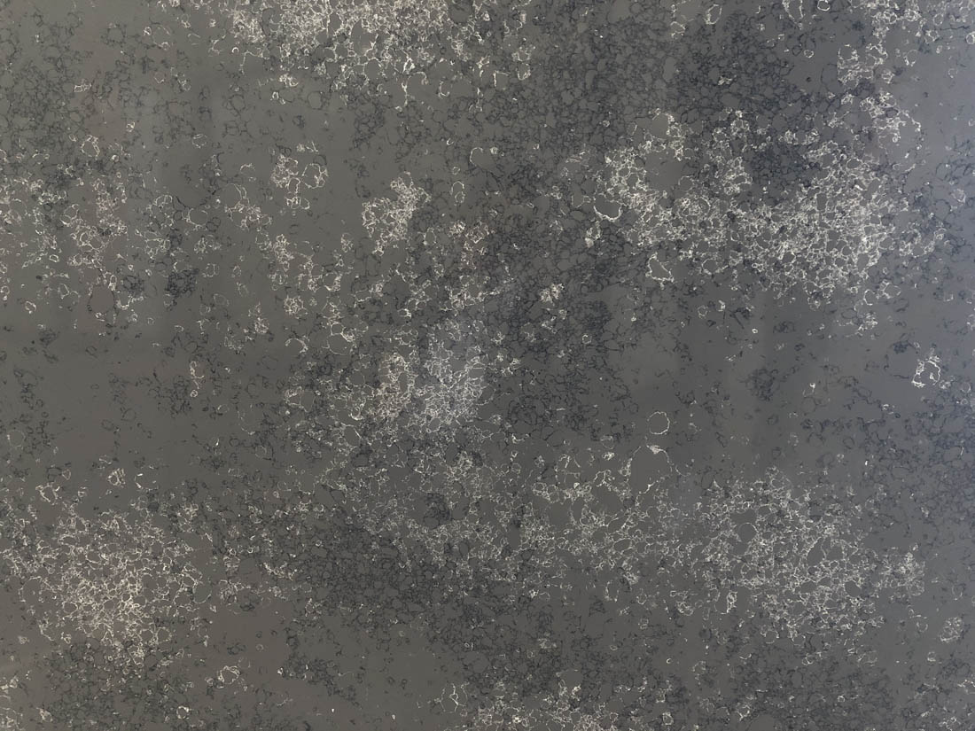 balck quartz countertop 2003s