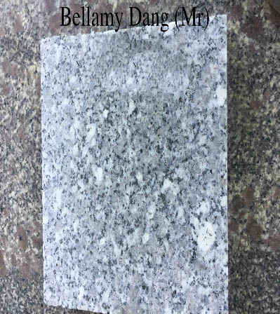 Viet Nam White Natural Granite with Black Dot SL Polished White Granite