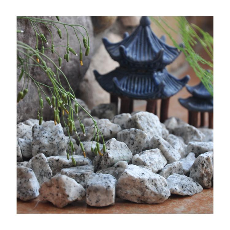 Hot Sale Gs-018 Sesame White Gravel Stone