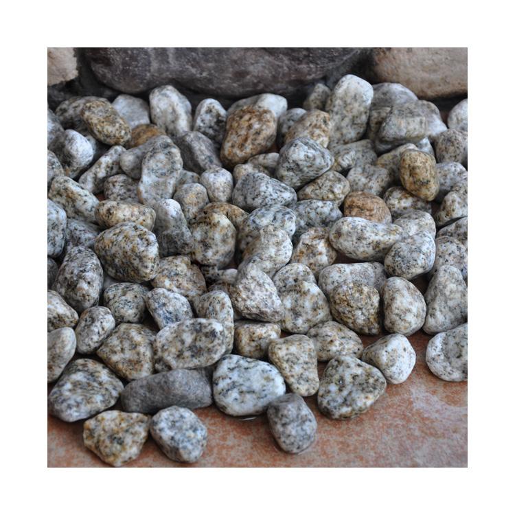 Chinese Gs-019 Giallo Cecilia Pebble Ball Stone