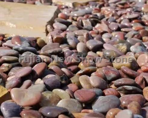 Ns015 pebble stone