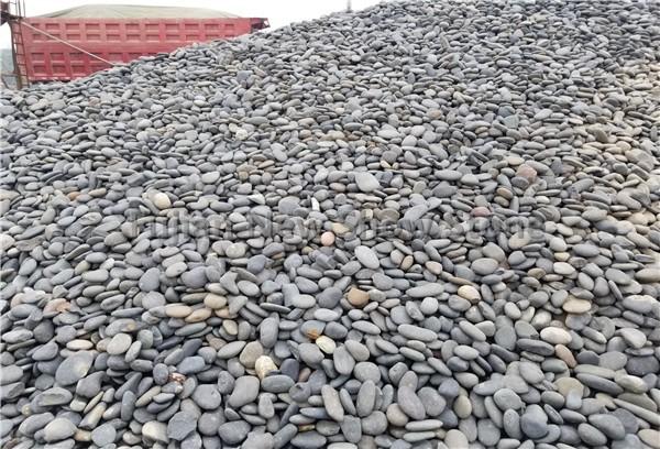 Ns022 pebble stone