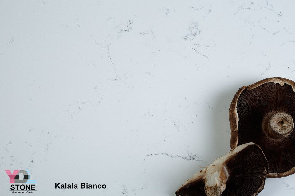 Kalala Bianco Quartz slabs