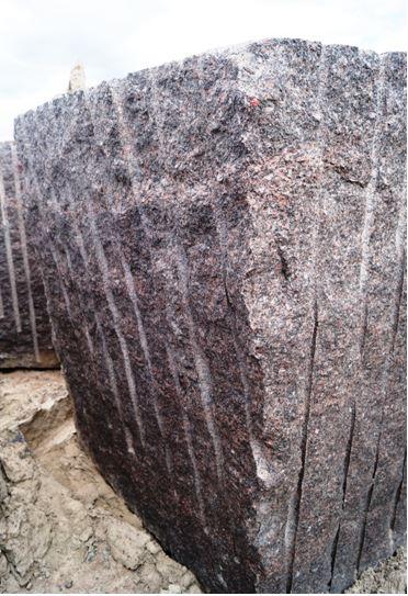 Brown Bear Granite Baltiyskoe