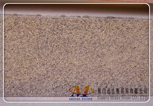 China Tiger Yellow Granite Tiles