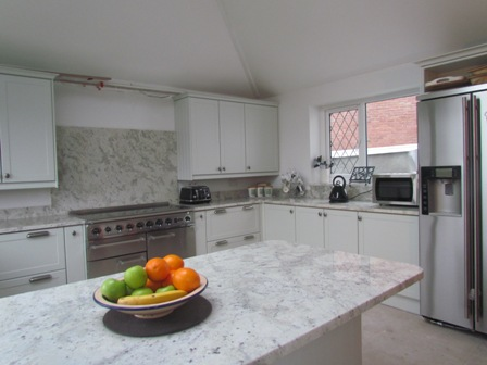 Andromedia White granite island top