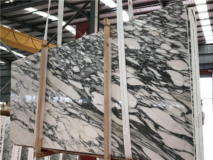 Italy Arabescato Corchia Marble Slab