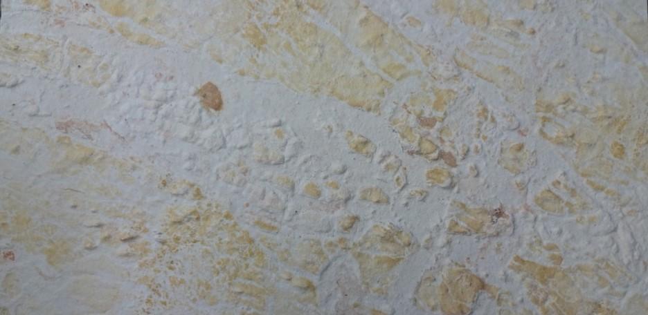 Flexible Stone Veneers Atlantic White