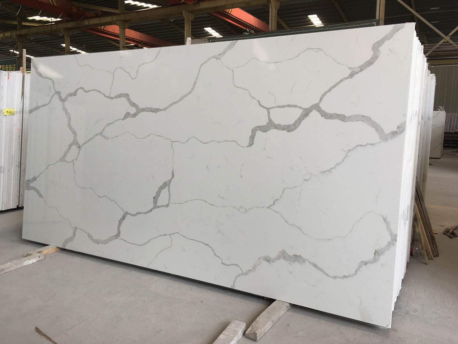 Calacatta White Quartz Slabs