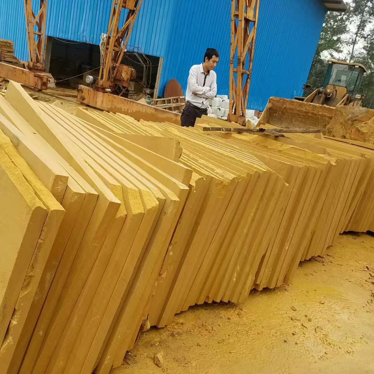 Chinese yellow sandstone slabs