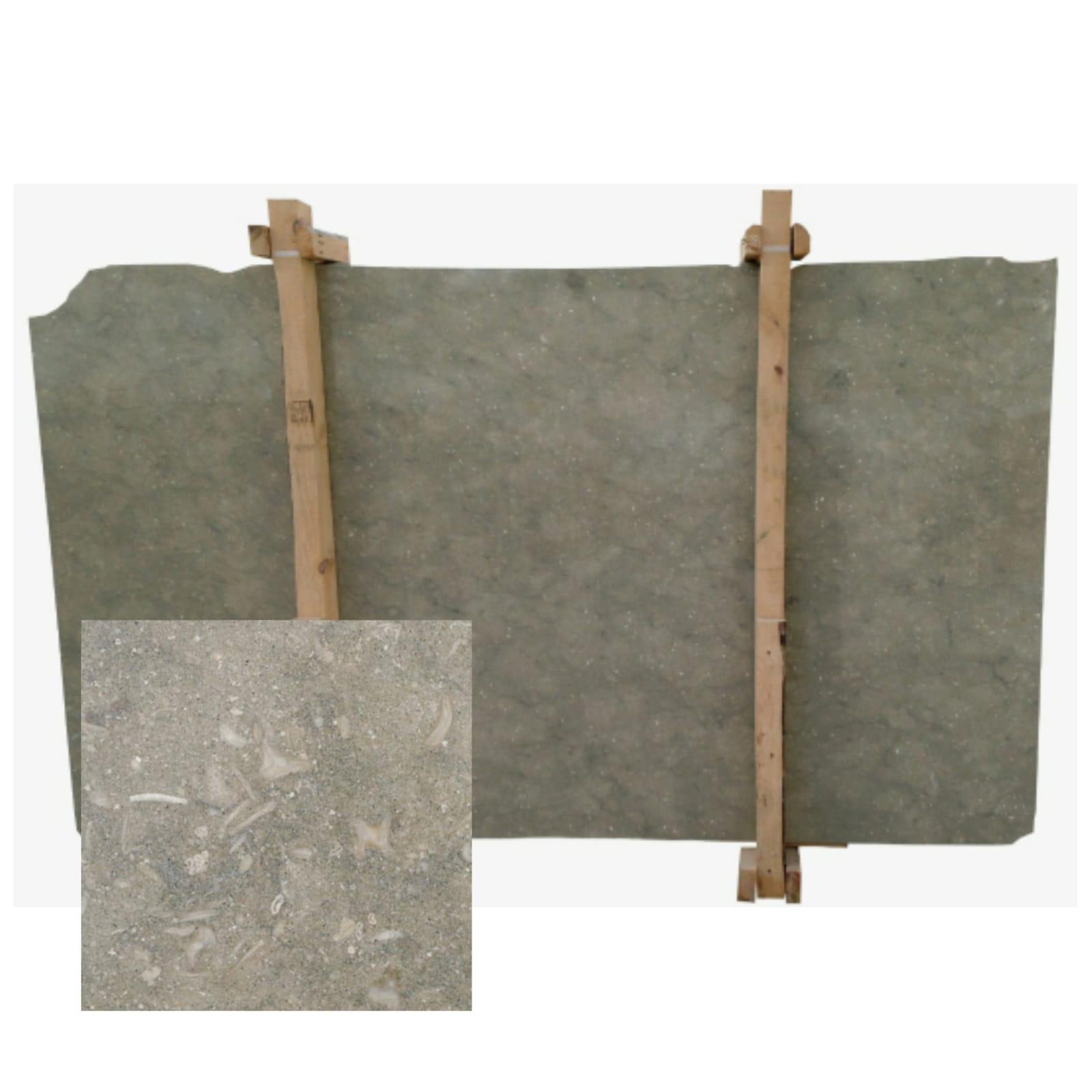 Limestone Slabs Coquillage Slabs