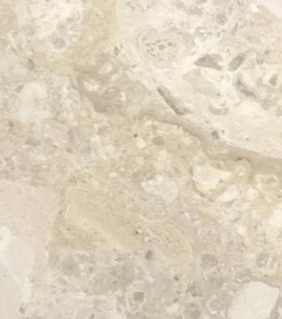 Cream Marble