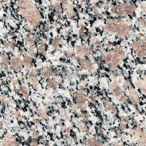G383 Granite Tile&Slab