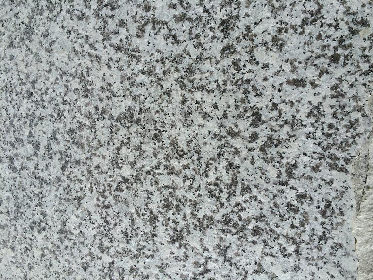G439 Big White Flower Granite Tiles