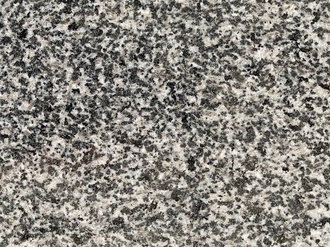 G603 Sesame Gray Polished Granite Slabs
