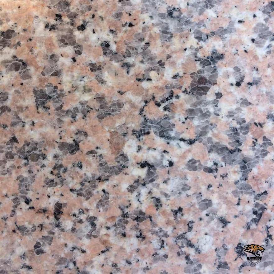 G636 Natural Pink Granite Tiles