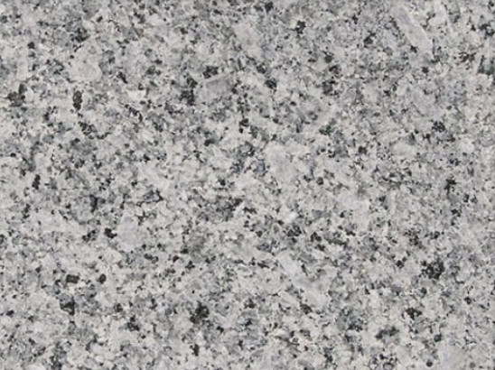 Dolphin Background Granite -6is
