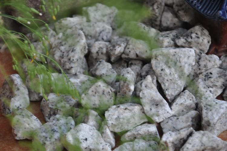 giallo cecilia pebble gravel stone GS-020