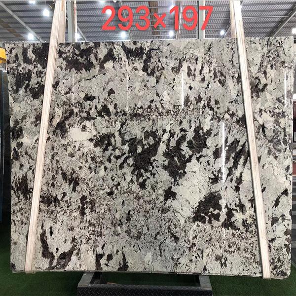 Grey luxury stone 293x197cm