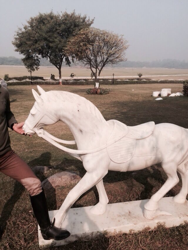 Animal Sculptures Marble Art Stone Horse Carvings