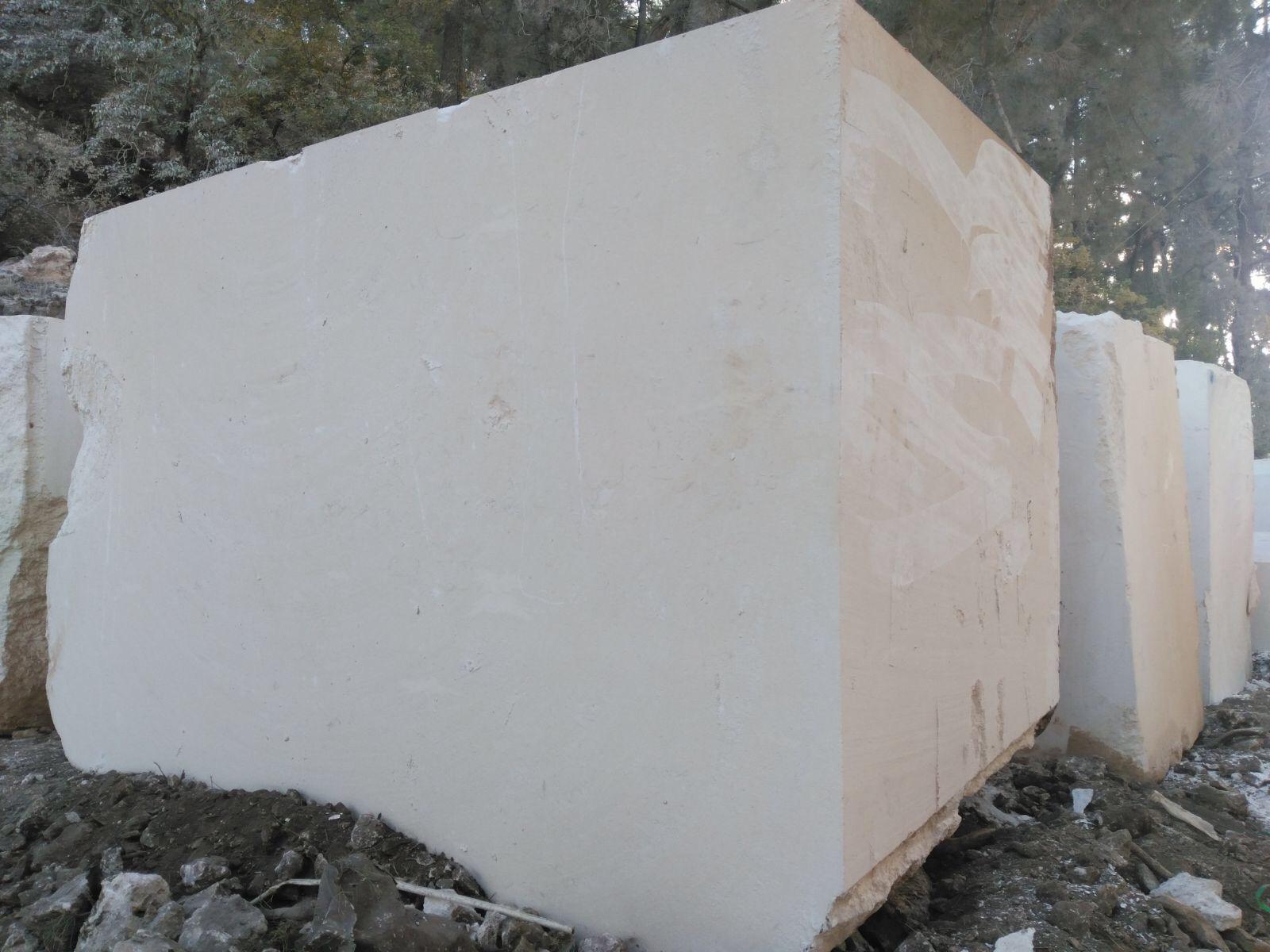 SHELL BEIGE LIMESTONE BLOCK