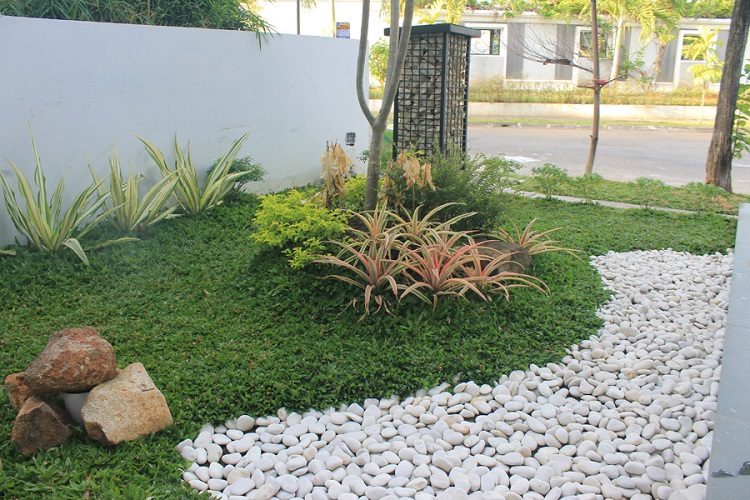 Indonesia Natural Pebbles Stone for Garden