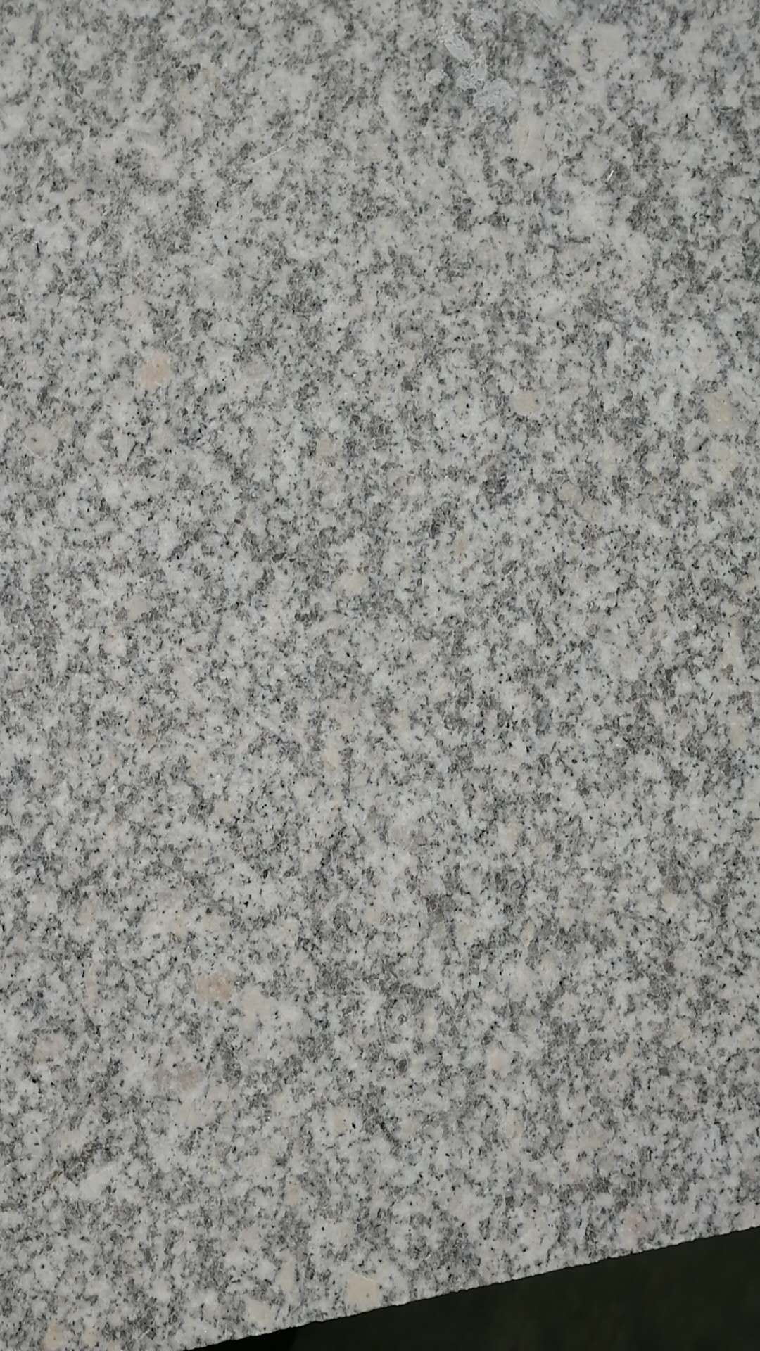Jade White G359 Shandong White China Granite Tiles