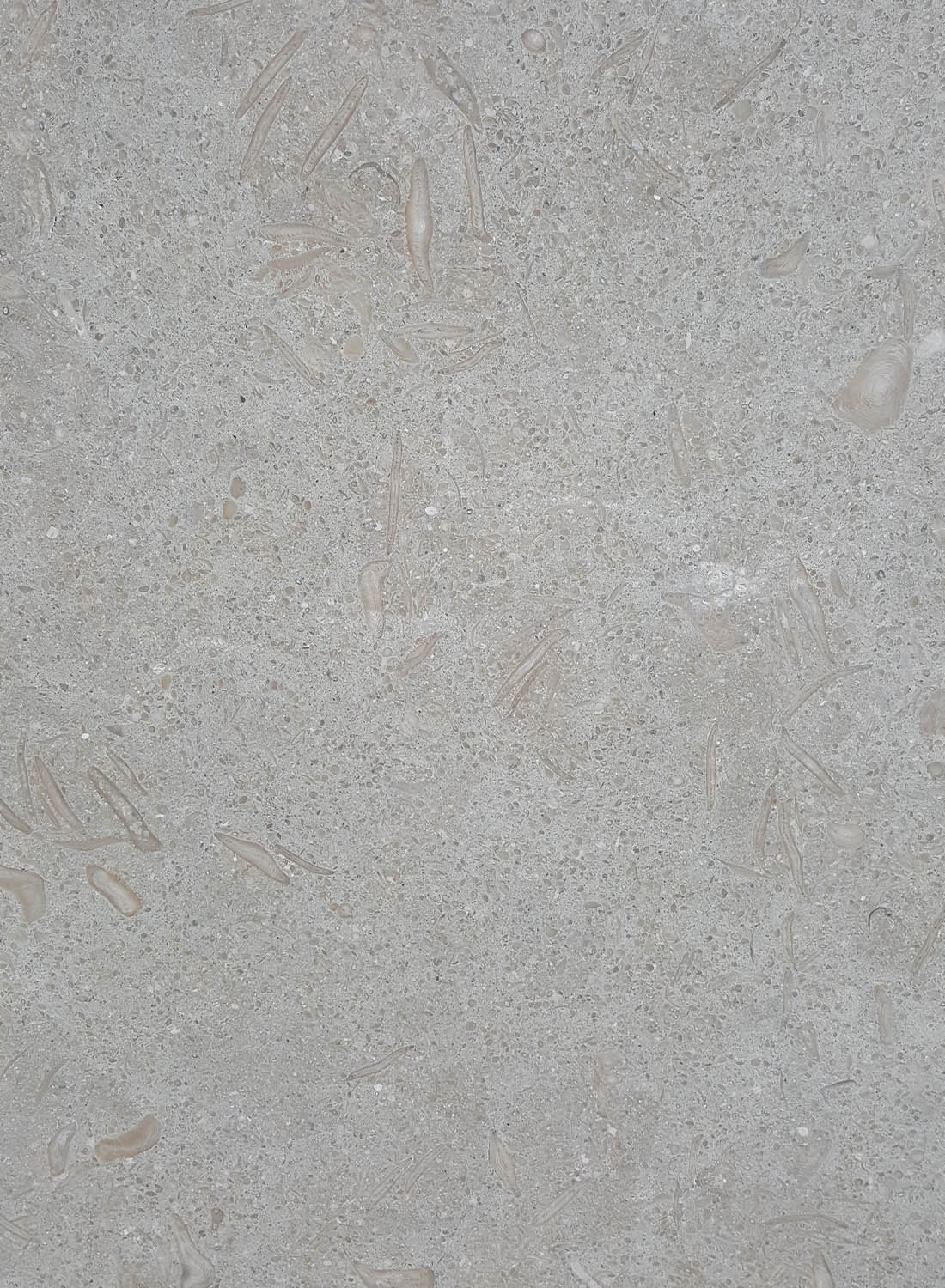 Beige Marble Natural Beige Marble Colors