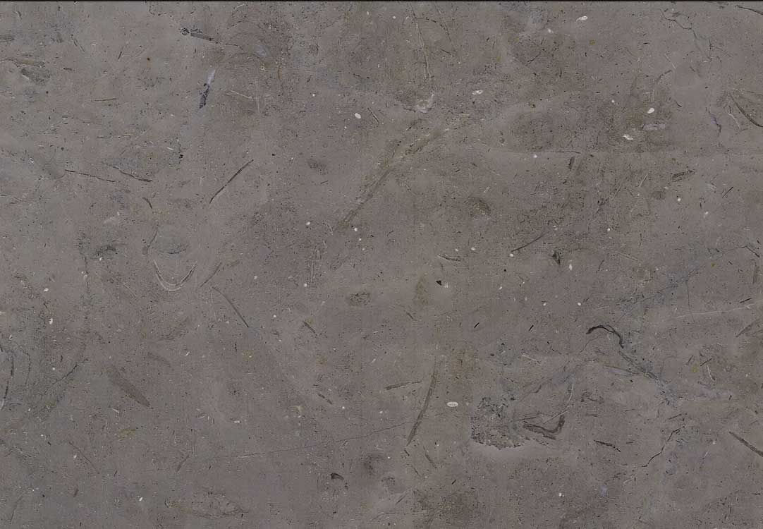 Melly Grey Fossils Brushed Marble
