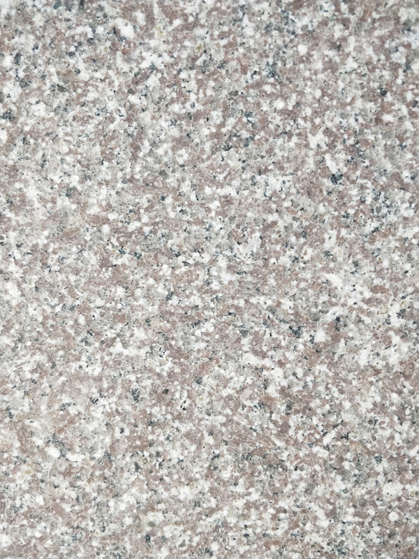 New G664 Polished Granite Slab