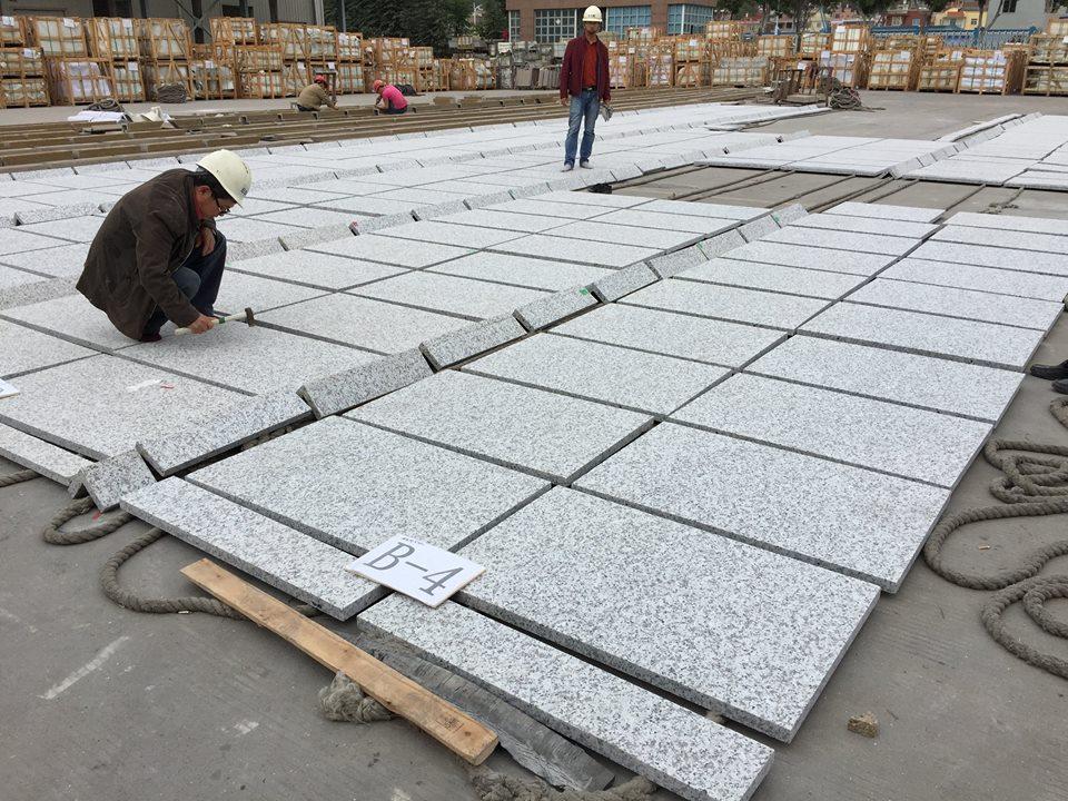 pauline grey g439 granite tiles