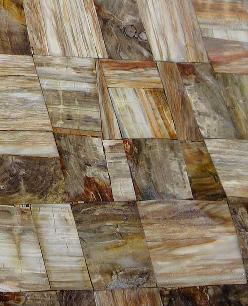 Semiprecious Stone Petrified Wood